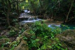 Vattenfall i en djup skog Arkivbild