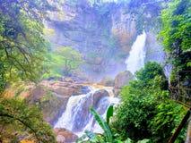 Vattenfall i en härlig skog royaltyfri fotografi