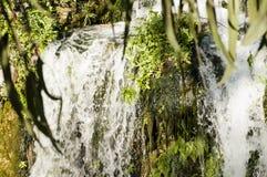 Vattenfall i en parkera Fotografering för Bildbyråer