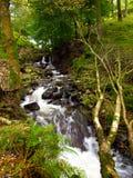 Vattenfall i en skog Royaltyfria Foton