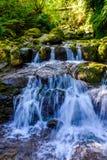 Vattenfall i en skog Royaltyfri Bild
