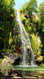 Vattenfall i ett mycket grönt buskigt område Royaltyfri Bild