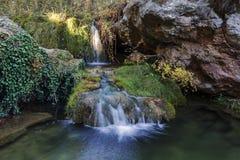 Vattenfall i ett ställe av den frodiga skogen Arkivbild