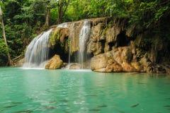 Vattenfall i Forest National Park Arkivfoto