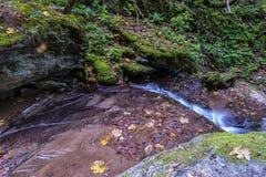 Vattenfall i Foresten Casentinesi NP i höst, Tuscany, Ital Royaltyfria Foton