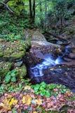 Vattenfall i Foresten Casentinesi NP i höst, Tuscany, Ital Royaltyfri Bild