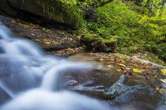 Vattenfall i Foresten Casentinesi NP i höst, Tuscany, Ital Arkivfoton
