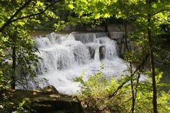 Vattenfall i Forestet Park Royaltyfri Fotografi