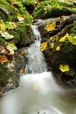 Vattenfall i höst Royaltyfri Bild
