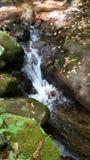Vattenfall i höst Royaltyfria Foton