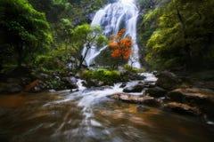 Vattenfall i hösten royaltyfria bilder