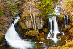 Vattenfall i höstskog Royaltyfria Foton