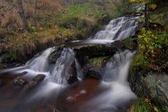Vattenfall i höstskog Royaltyfri Fotografi