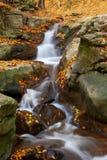 Vattenfall i höstskog Arkivbild