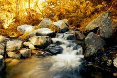 Vattenfall i höstskog Fotografering för Bildbyråer