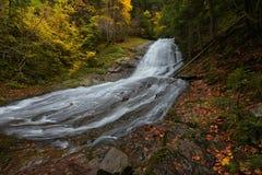 Vattenfall i höstskog Arkivfoto