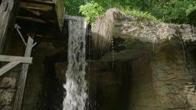 Vattenfall i höstskog på den Erawan nationalparken, USA 4k arkivfilmer