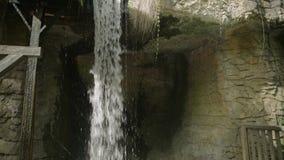 Vattenfall i höstskog på den Erawan nationalparken, USA 4k lager videofilmer