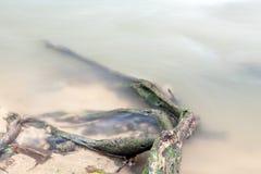 Vattenfall i Huay till krabien Thailand Fotografering för Bildbyråer