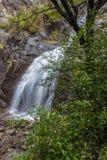 Vattenfall i infödingen Bush Arkivfoton