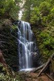 Vattenfall i Kalifornien Fotografering för Bildbyråer