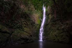 Vattenfall i mörk skog i Nya Zeeland arkivbilder