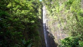 Vattenfall i Maui Hawaii stock video