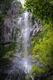 Vattenfall i Maui Hawaii Arkivbilder