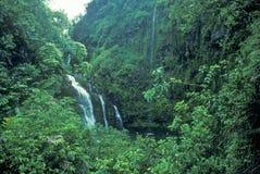 Vattenfall i Maui, Hawaii Royaltyfria Bilder