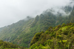 Vattenfall i Milford Sound, Nya Zeeland Arkivbilder