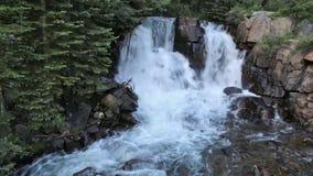Vattenfall i mitt av en skog arkivfilmer