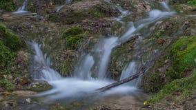 Vattenfall i mossan och stenarna för skoggräsplan Sommar Royaltyfria Foton