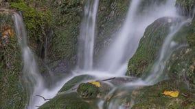 Vattenfall i mossan och stenarna för skoggräsplan Sommar Arkivbilder