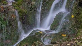 Vattenfall i mossan och stenarna för skoggräsplan Sommar Royaltyfri Bild