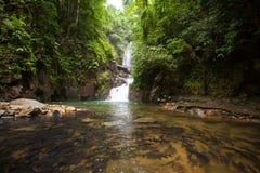 Vattenfall i nationalpark Arkivfoton