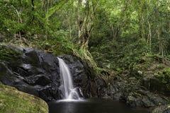 Vattenfall i nationalpark i Thailand Fotografering för Bildbyråer
