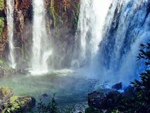 Vattenfall i nationalparken Iguazu - Argentina Arkivbild