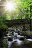 Vattenfall i nationalparken Sumava Fotografering för Bildbyråer