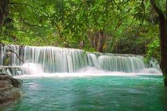 Vattenfall i ny grön skog Arkivfoto