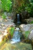 Vattenfall i parkera Vorontsov Arkivfoton
