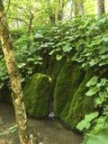 Vattenfall i Plitvice Royaltyfri Foto