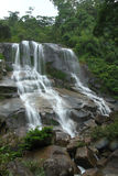 Vattenfall i rainforest Arkivfoton