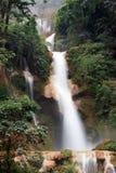 Vattenfall i rainforest Royaltyfri Foto