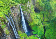 Vattenfall i Rainforest royaltyfri bild