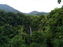 Vattenfall i Rainforest Royaltyfria Bilder