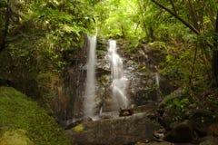 Vattenfall i Rainforest Arkivfoto