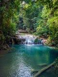 Vattenfall i rainforesten Arkivbild