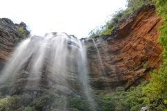 Vattenfall i rainforesten på Wentworth Falls, New South Wales, Australien royaltyfria bilder