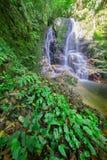 Vattenfall i regnskog Fotografering för Bildbyråer