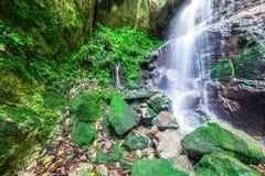 Vattenfall i regnskog Arkivbild